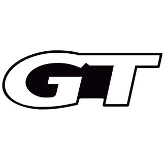Adhesivo Ford Mustang Gt2 Detail